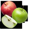 خرید سیب تازه برای تولید سیب خشک