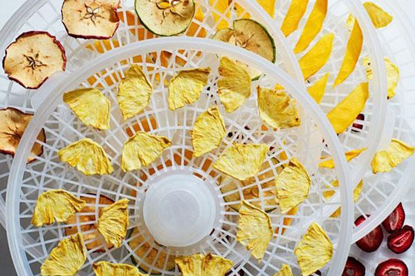 خشک کردن میوه با دستگاه در خانه